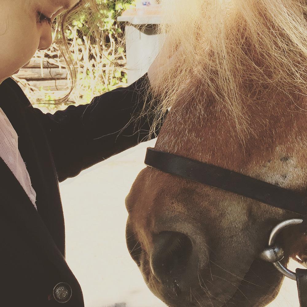 Pony reiten im Niendorfer Gehege - Ausflüge mit Kindern in Hamburg - Pferde reiten Kinder